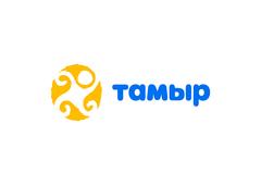 tamyr_2021logo